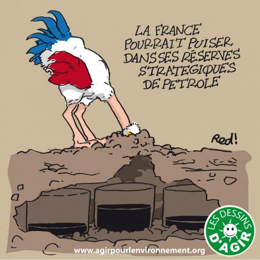 Dessin d 39 agir r serve p troli re le coq gaulois opte pour la politique de l 39 autruche - Poids d une autruche ...