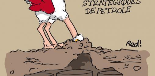 Réserve pétrolière : Le coq gaulois opte pour la politique de l'autruche !