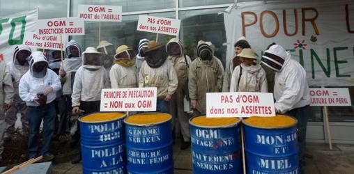 Rassemblement pour le droit et la liberté de butiner sans OGM. 20/01/2012