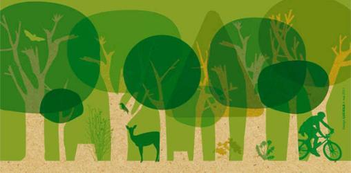 Colloque international « Pour un meilleur partage des usages de la Forêt »