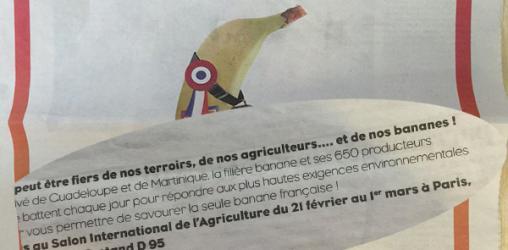 La publicité faussement écologique à la banane !