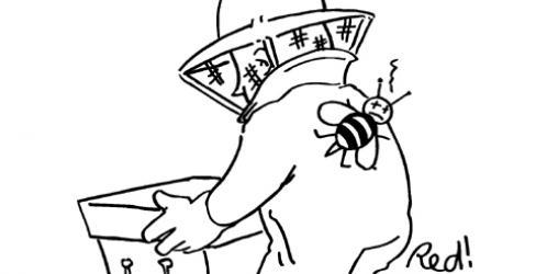 Pesticides et abeilles : arrêtez le massacre !