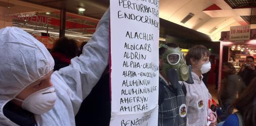 Action Perturbateurs Endocriniens Auchan