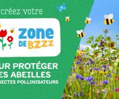 Zone de BZZZ (Saison 2019)