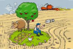 l'environnement et les enjeux agricoles et alimentaires sont les grands absents