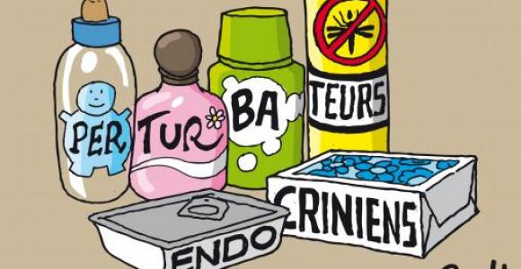 Perturbateurs endocriniens : Environnement perturbé, santé menacée !