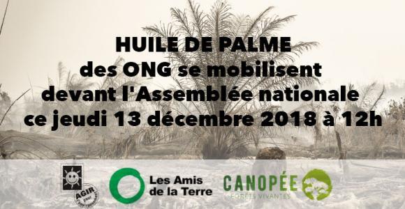 Huile de palme : des ONG se mobilisent devant l'Assemblée nationale ce jeudi 13