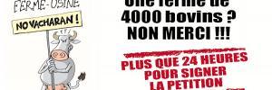 NON À LA FERME-USINE DES 4000 BOVINS !!!